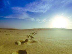 dunas do nordeste