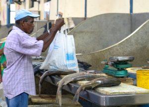 Peixaria no Mercado Ver-o-Peso